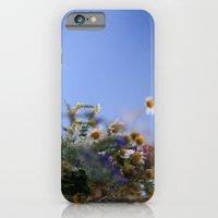 Daisies In Blue iPhone 6 Slim Case