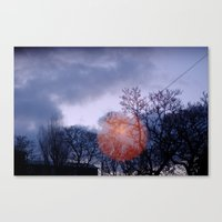 Come in from the Cold Canvas Print