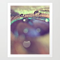Water Drops Art Print