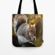 ANIMALS-Squirrel nutkin Tote Bag