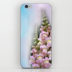snapdragons and sky iPhone & iPod Skin