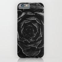 Sempervivum #1 iPhone 6 Slim Case