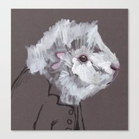 Mr Fluff Canvas Print
