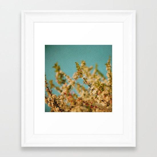 Darling Buds of May Framed Art Print