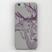 Rain Deer iPhone & iPod Skin