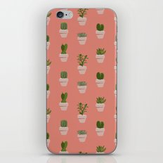 Cacti & Succulents iPhone & iPod Skin