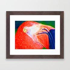 Flamingo Nose Framed Art Print