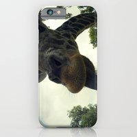 iPhone & iPod Case featuring Giraffes are Silly. by Starr Shaver