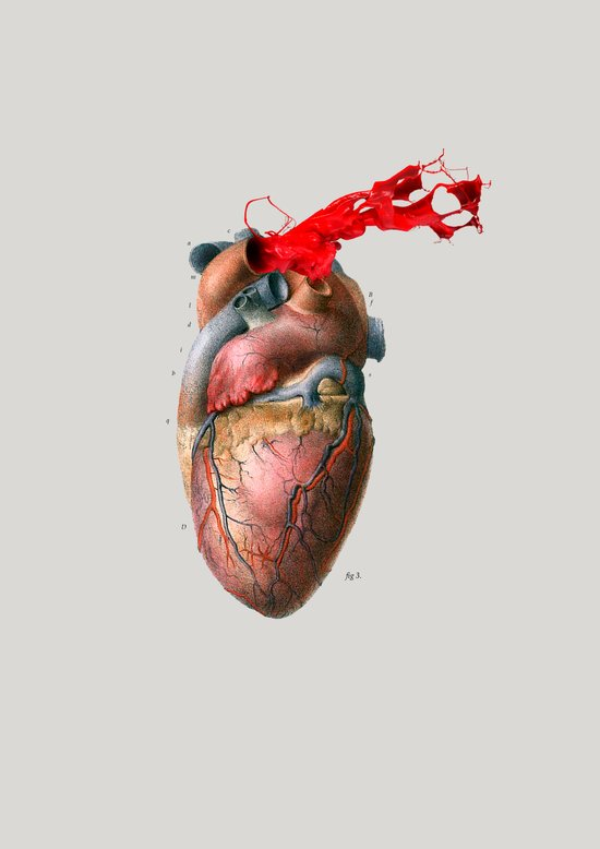 Broken Heart - Fig. 3 Art Print