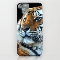 Sumatran Tiger - Panther… iPhone 6 Slim Case