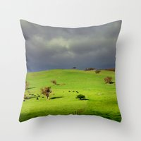 Following The Fence Line… Throw Pillow