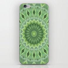 Green Beauty iPhone & iPod Skin