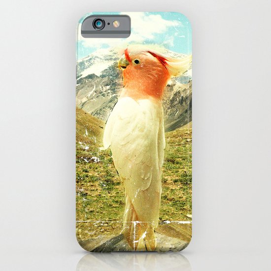 Parrot Mountain iPhone & iPod Case