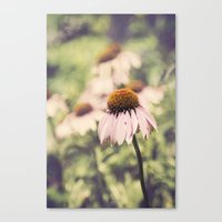 The Individual Canvas Print