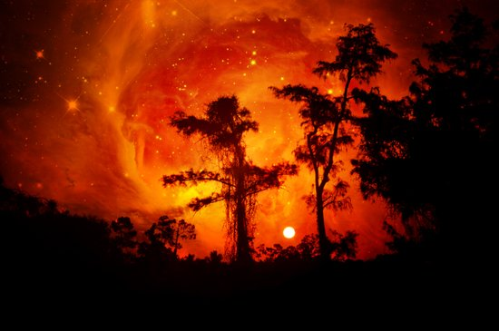 Fire in the Everglades Art Print