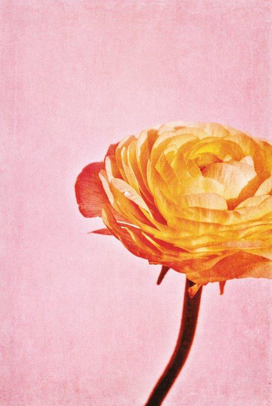 A dream of spring Art Print
