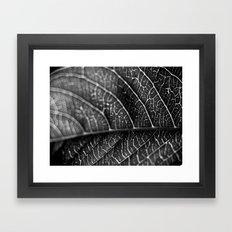 B&W Bokeh Framed Art Print