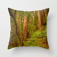 Redwoods Regional II Throw Pillow
