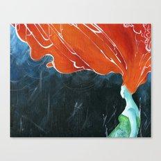 hurricane Canvas Print