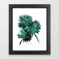 Cypress Palm Framed Art Print