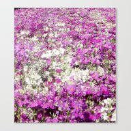 Colour My World Canvas Print
