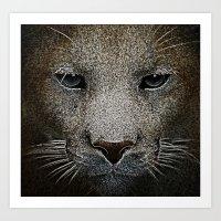 Cougar Shadow Art Print