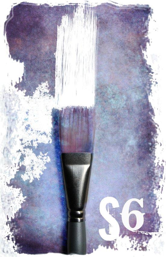 S6  Art Print