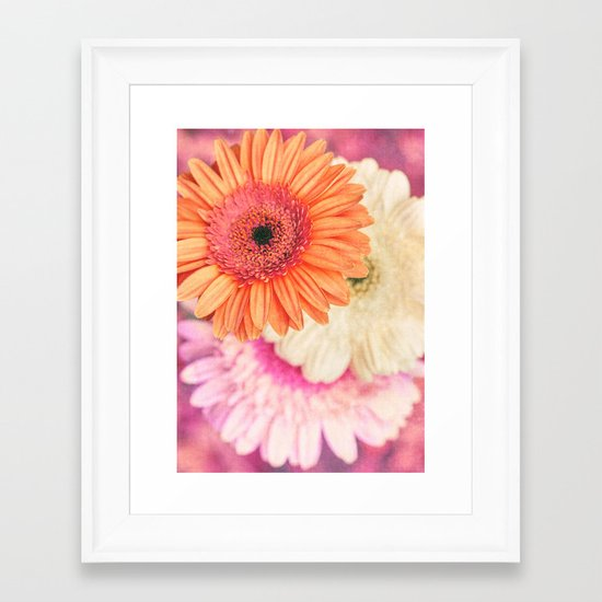 Sweet Daisy Sorbet Framed Art Print