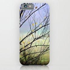 Riverbirch iPhone 6 Slim Case