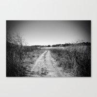 Texas Road Canvas Print