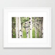 Aspen Eyes Framed Art Print