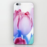 MY FAVORITE FLOWER iPhone & iPod Skin