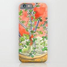Succulents iPhone 6s Slim Case