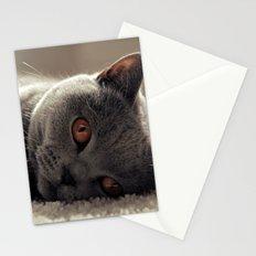 Dieslchen Stationery Cards