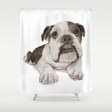 A Bulldog Puppy :: Brindle  Shower Curtain