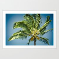 Keanae Hawaiian Coconut … Art Print