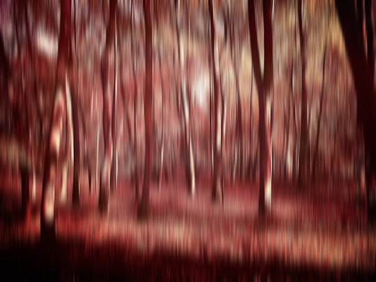 forest abstract #2 Art Print