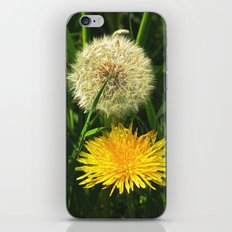 Taraxacum Officinale iPhone & iPod Skin