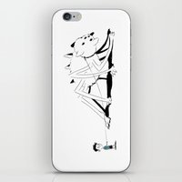 Pet Spidercat iPhone & iPod Skin