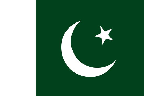 The National Flag of Pakistan - Authentic Version Art Print