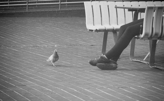 pigeon toes... Art Print