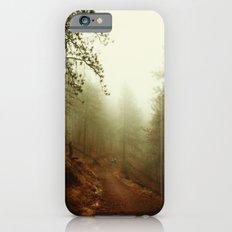 Autumn in Ponderosa Pines Forest iPhone 6 Slim Case