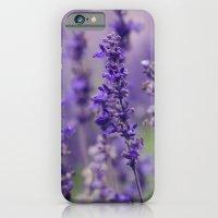 Lovely Lavender iPhone 6 Slim Case