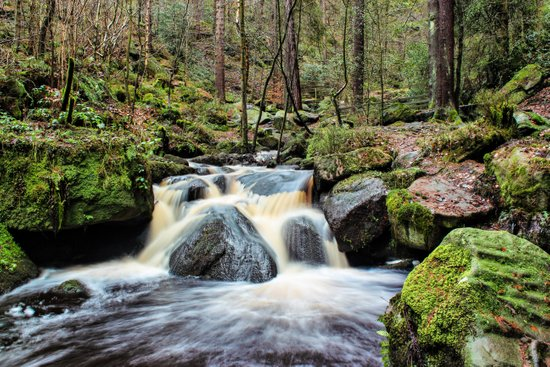Wyming Brook Cascades Art Print