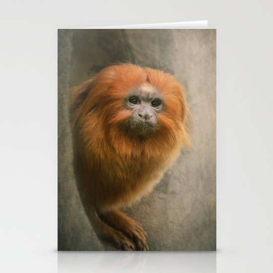 Little Golden Headed Lion Tamarin Stationery Card