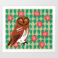 Elf Owl And Cactus Bloom… Art Print
