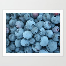 Blueberries Art Print