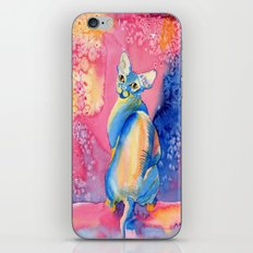Sphynx Cat 3 iPhone & iPod Skin