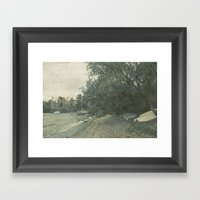 Acacia Bay Framed Art Print
