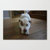 Dawg: 2 Canvas Print